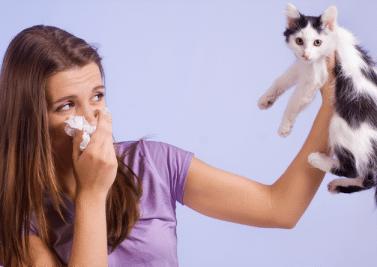 Des rhinites allergiques à l'asthme