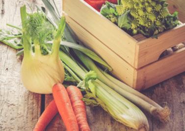 Végétarien et en bonne santé ?