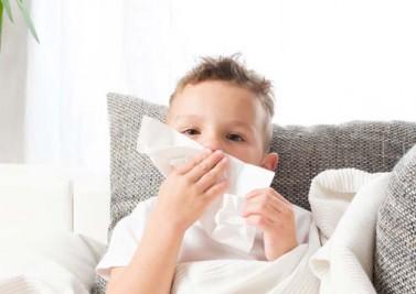 Allergie aux acariens : comment s'en débarrasser ?