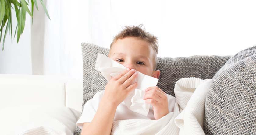 se d barrasser des acariens et d une rhinite allergique. Black Bedroom Furniture Sets. Home Design Ideas