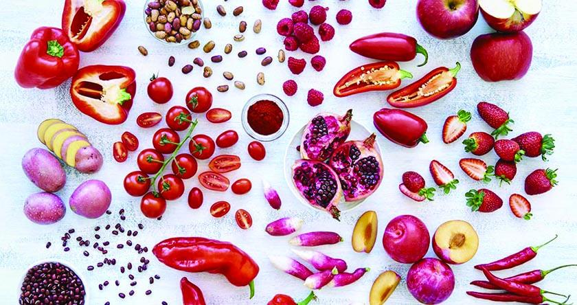 10 principes nutritionnels + 25 exercices + 100 recettes = 1 livre à se procurer de toute urgence