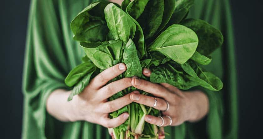 Epinards, recettes de saison, légumes de mai
