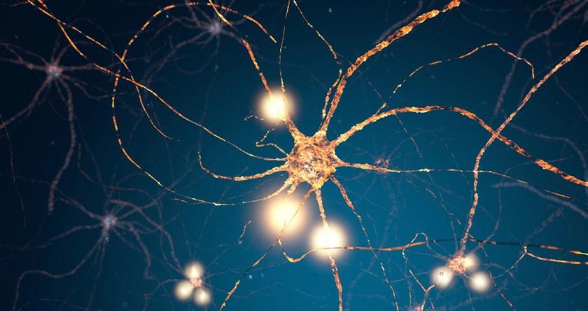 Sclérose en plaques : évolution et traitements