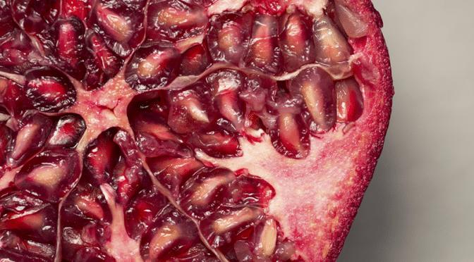 Les antioxydants : nos alliés pour longtemps !
