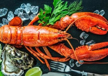 Nutrition : cap sur les fruits de mer et leurs bienfaits !