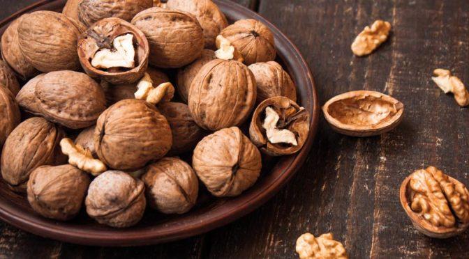 La noix : une coquille bien faite !