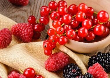 Les atouts des fruits rouges