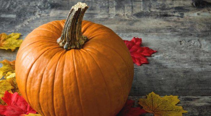 Recettes d'automne : cap sur la légèreté et la vitalité !