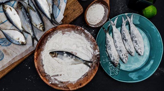 Cuisiner la mer, une immersion délicieuse