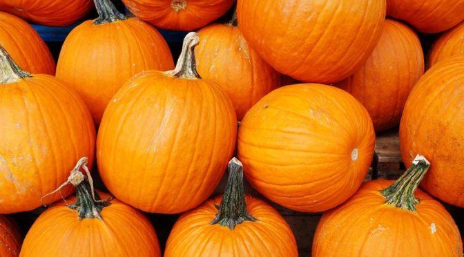 Recettes d'automne : des couleurs flamboyantes dans l'assiette !