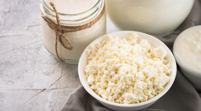 Les probiotiques en cuisine pour une nutrition bien-être