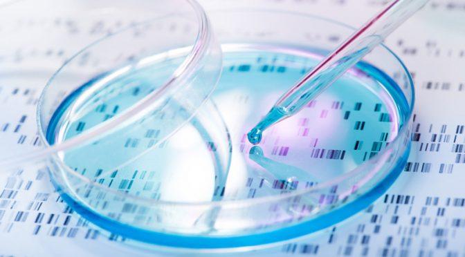Les promesses de l'autogreffe de cellules souches contre la sclérose en plaque