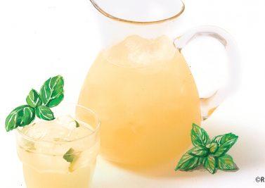 Agua Fresca Fenouil Citron Menthe