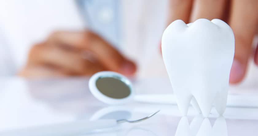 La vie à belles dents !