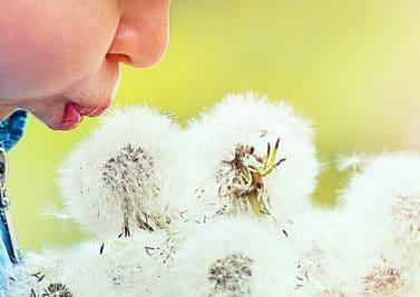 Toux allergique chez l'enfant