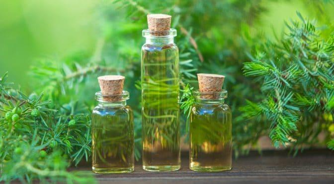 5 huiles essentielles pour assainir la maison