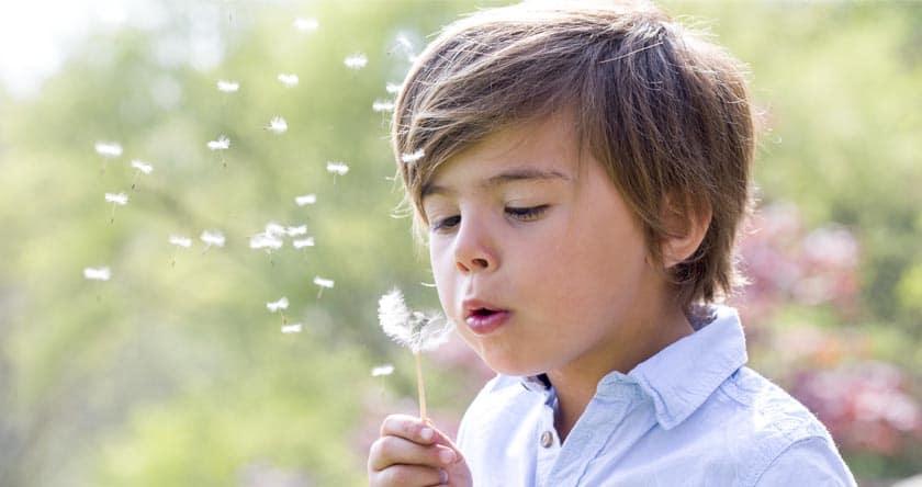 Médecine par les plantes : les enfants aussi