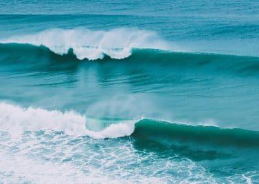 La mer, un océan de principes actifs