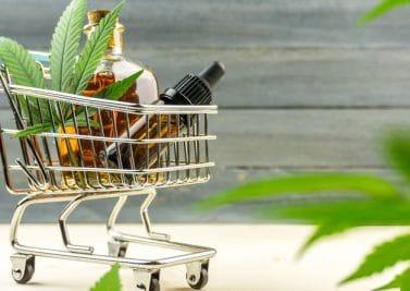 Quelles perspectives d'évolution pour la consommation de CBD légal dans l'Hexagone ?